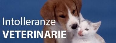 Intolleranze alimentari veterinarie